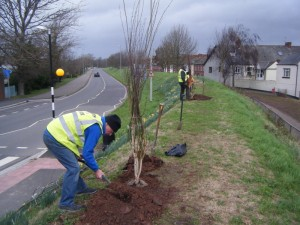 Photo of Brian planting tree.