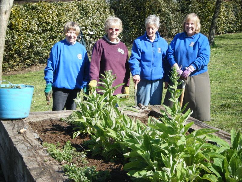 Volunteers weed raised beds in Bapton Lane park